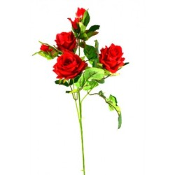 RAMO ROSA GINA RED
