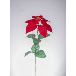 POINSETTIA SINGOLA RED