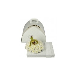 FLOXI UNI COLOR WHITE OASIS 22,5X17.5X3.2 CM