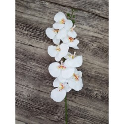 ORCHID X 9 - WHITE
