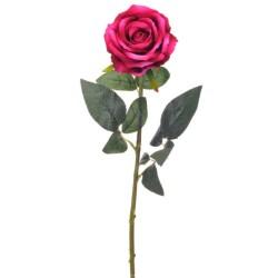 SINGLE ROSE BEAUTY H76 D 10 CM