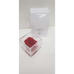CUBO 8X8 COMP. ROSA E GEL RED