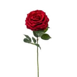 ROSA AMBRA RED