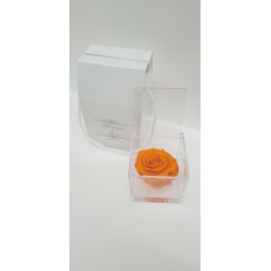 CUBO 8X8 COMP. ROSA E GEL ORANGE