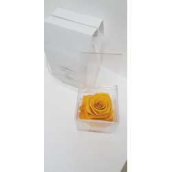 CUBO 8X8 COMP. ROSA E GEL YELLOW