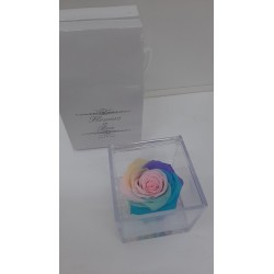 CUBO 8X8 COMP. ROSA E GEL NEW RAINBOW
