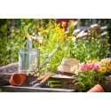 Prodotti Cura Giardino E Piante